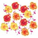 Confitti chaleur Hibiscus